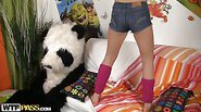 Hot brunette has real fuck with Panda bear