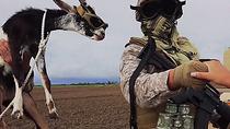 Afgan teen fucked by american soldiers huge black cock